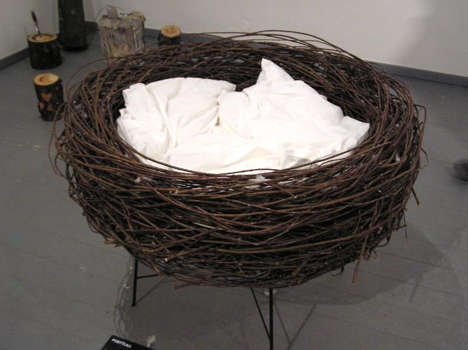 hnízdo