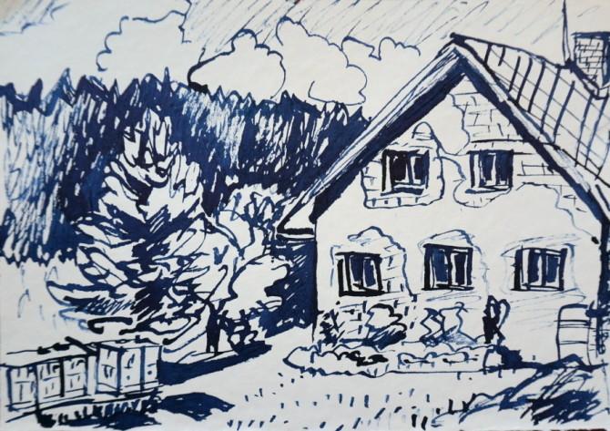 rákosové pero - kresba