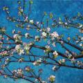 jabloň - apple tree