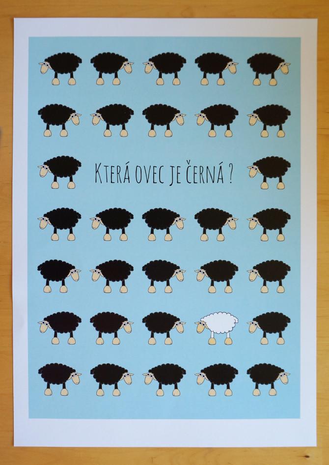 Která ovec je černá? plakát