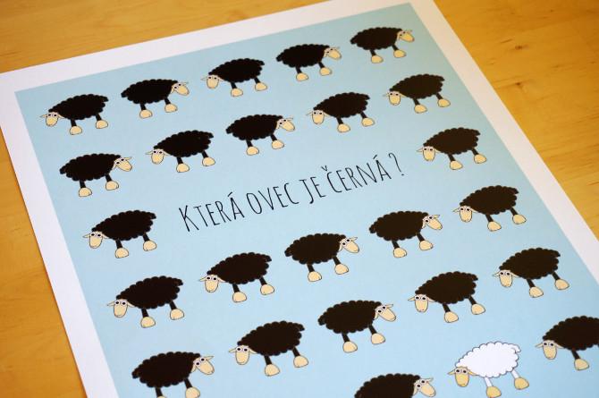 Která ovec je černá? - plakát