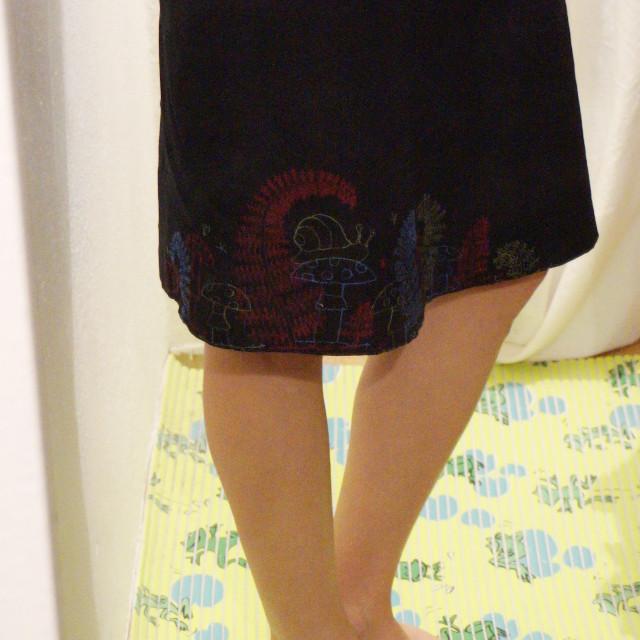 sukně s výšivkou