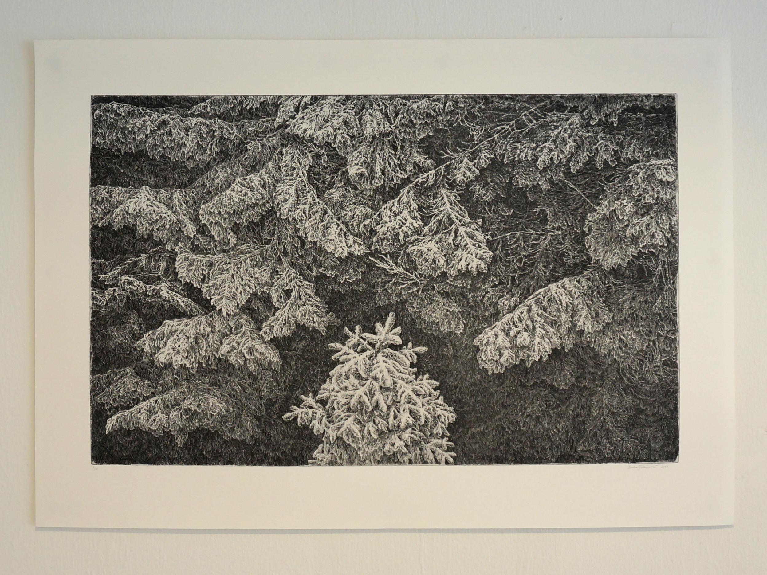 Lenka Falušiová: V hlubinách lesa