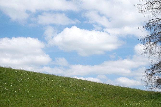 krajina nebe a louka