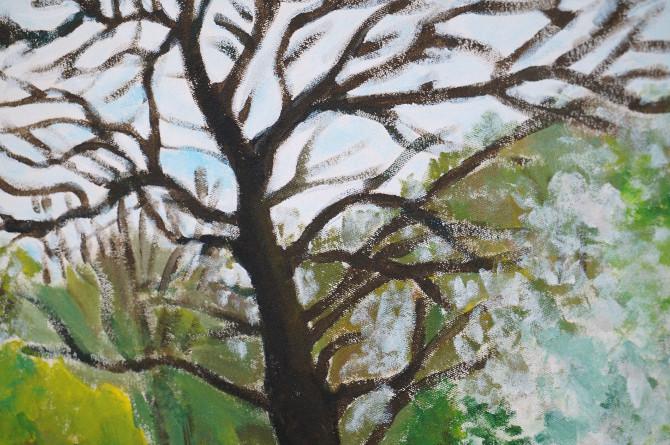 obraz Čimice - strom detail