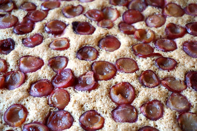 piškotová bublanina s třešněmi